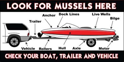 Check Boats and Trailers for Mussels